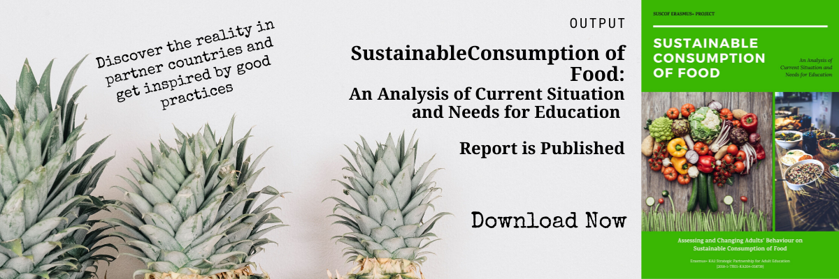 SUSCOF Needs Analysis and the Current Situation Report